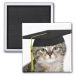 Graduación del gatito iman de frigorífico