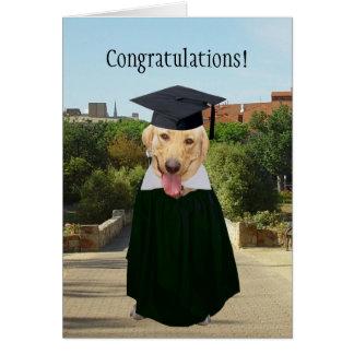Graduación divertida adaptable del perro/del tarjeta de felicitación