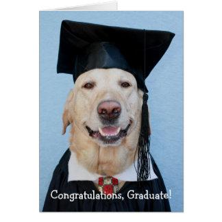 Graduación divertida del laboratorio tarjeta de felicitación