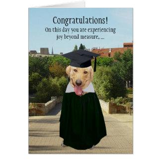 Graduación divertida del perro/del laboratorio tarjeta de felicitación