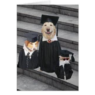 Graduación divertida del perro tarjetas