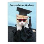¡Graduado de la enhorabuena! Felicitación