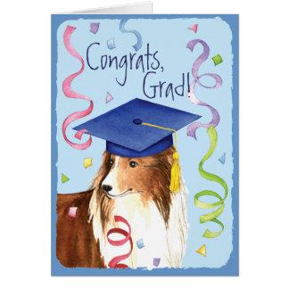 Graduado de Sheltie Tarjeta De Felicitación