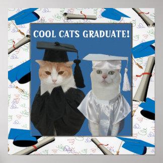 Graduado fresco adaptable de los gatos para los póster