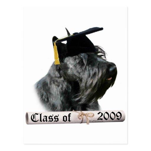 Graduado negro 09 de Terrier del escocés Postal