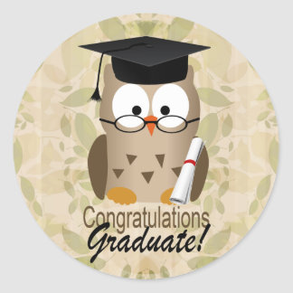 Graduado sabio lindo del búho pegatina redonda