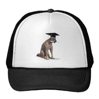 Graduate Coyote Trucker Hat