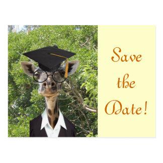 Graduate Giraffe Gold Tassel Postcard