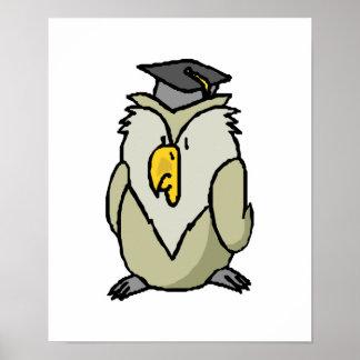 graduate owl print