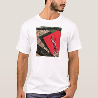 Graduate, red grad cap T-Shirt