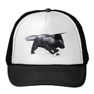 Graduate Skunk Trucker Hat