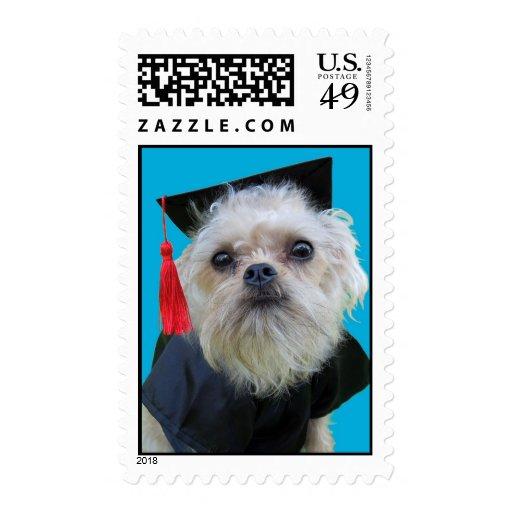 Graduating Dog Tator Postage