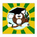 Graduating Owl w/  Green & Gold School Colors Photo Cut Outs