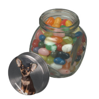 Graduation Chihuahua dog Glass Jar