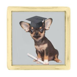 Graduation Chihuahua dog Gold Finish Lapel Pin