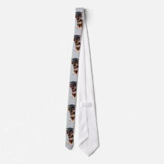 Graduation Chihuahua dog Neck Tie