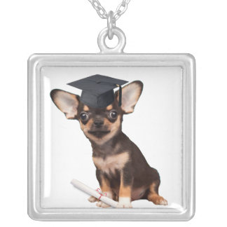 Graduation Chihuahua dog Silver Plated Necklace