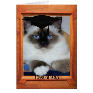 Graduation class of 2015 greeting card