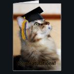 "Graduation Congratulations Cat Wearing Mortarboard Card<br><div class=""desc"">Graduation Congratulations Cat Wearing Mortarboard</div>"