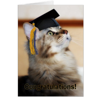 Graduation Congratulations Cat Wearing Mortarboard Card