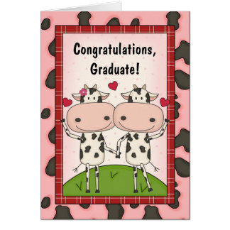 Graduation Congratulations - Cows Card