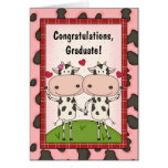 Graduation Congratulations - Cows Greeting Cards