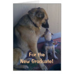 Graduation Congratulations Dogs Greeting Card