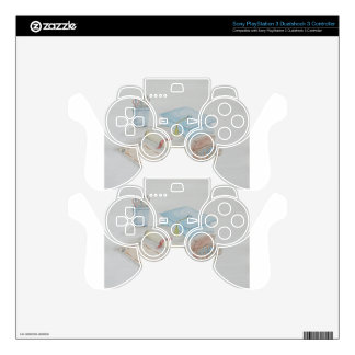 graduation day skin for PS3 controller