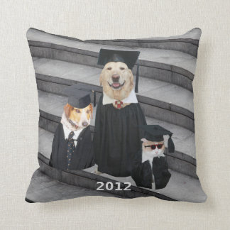 Graduation Gift American MoJo Pillow