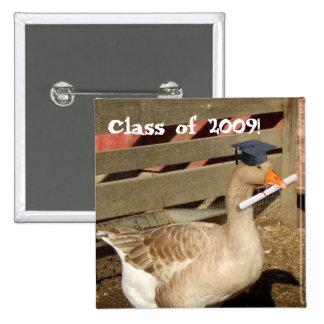 Graduation goose pinback buttons