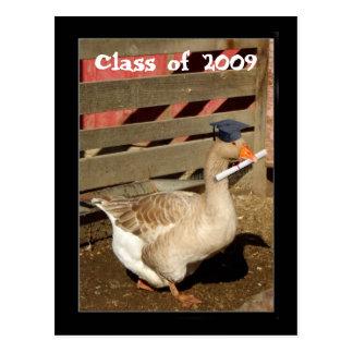 Graduation goose postcard