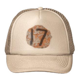 Graffiti 17th Birthday Gifts Trucker Hat