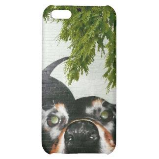 Graffiti Dog Case For iPhone 5C
