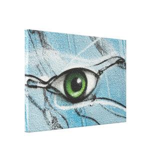 Graffiti Eye Canvas Print