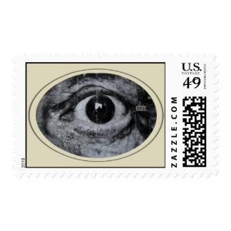 Graffiti Postage Stamps
