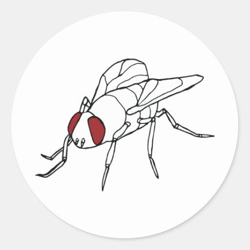 gráfico animal del ejemplo del insecto de la mosca etiqueta redonda