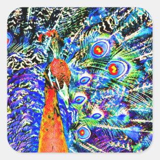 gráfico artístico anaranjado del pavo real y de calcomanías cuadradas personalizadas