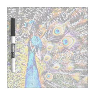 gráfico artístico del pavo real y de las plumas pizarras