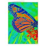 Gráfico bonito colorized mariposa de la fotografía felicitacion