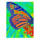 Gráfico bonito colorized mariposa de la fotografía postales
