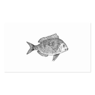 Gráfico de los pescados del pagel tarjeta de visita