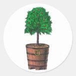 Gráfico del árbol en cubo de madera del barril pegatina redonda