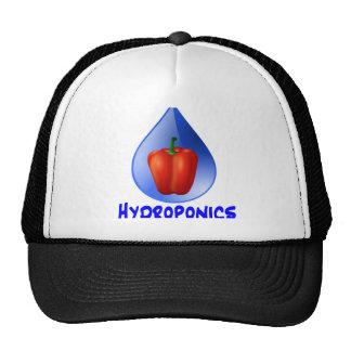Gráfico del hidrocultivo, pimienta hidropónica y d gorro