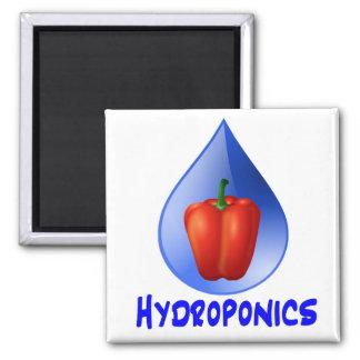 Gráfico del hidrocultivo, pimienta hidropónica y d imán cuadrado