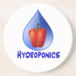 Gráfico del hidrocultivo, pimienta hidropónica y d posavasos manualidades