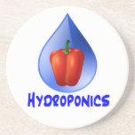 Gráfico del hidrocultivo, pimienta hidropónica y d posavaso para bebida