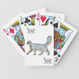 Gráfico somalí del azul del gato barajas de cartas