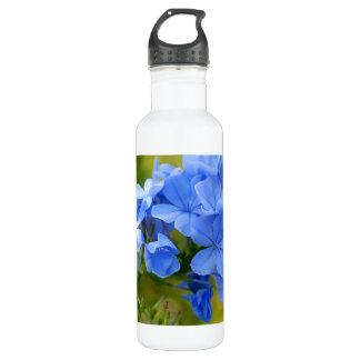 Grafito - flores azules del verano