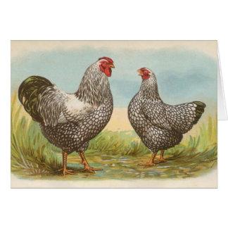 Graham - pollos atados plata de Wyandotte Tarjeta De Felicitación