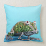 Grahamstown, Eastern Cape Province, South Africa Throw Pillow